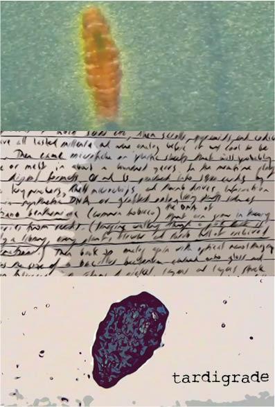 tardigrade (poster)